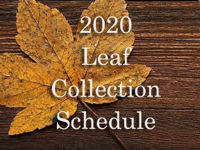 2020 leaf collection